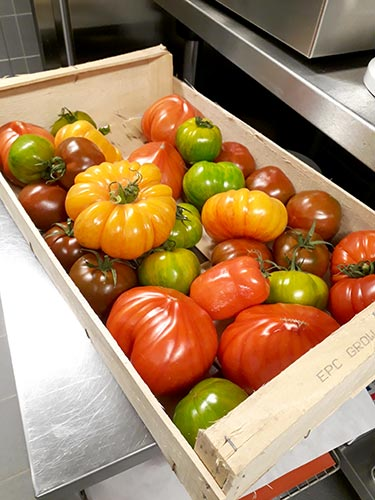 tomates été, madame huitric, couleurs